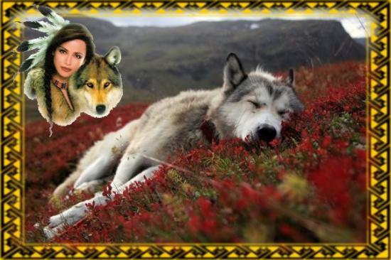 Le rêve du Loup